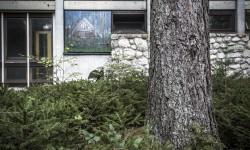 Un dipinto di Gino Blanc, installato all'esterno di un Padiglione, nella giungla di Borca - Foto Giacomo De Donà